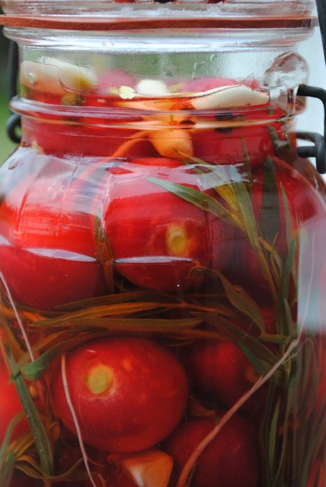 jar of radishes